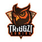 Triggzi