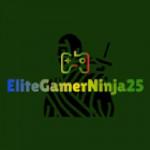 EliteGamerNinja25